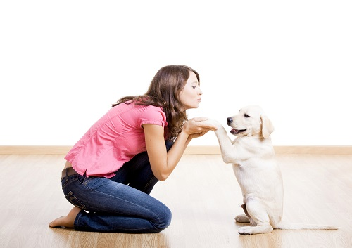Does your puppy have good manners?
