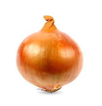 Onion unsafe for animal consumption